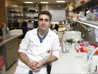 Doctor Manel Esteller, investigador especialista en càncer de pulmó ORIOL DURAN