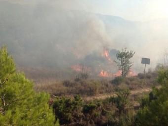 Les flames han cremat unes 15 hectàrees de vegetació a Pinell de Brai BOMBERS DE LA GENERALITAT