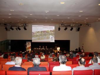 La cooperativa Actel va celebrar ahir a la Llotja de Lleida l'assemblea anual E.B. / ACN
