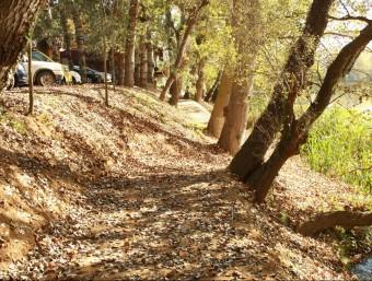 Un tram del nou recorregut a tocar de riu, a l'alçada de Colomers. JOAN PUNTÍ