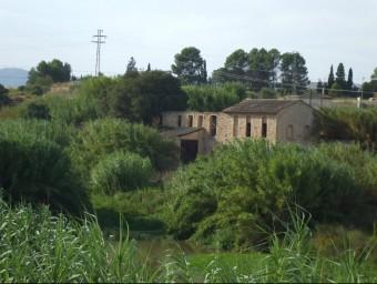 Ruta del riu Albaida al seu pas per Atzeneta. EL PUNT AVUI