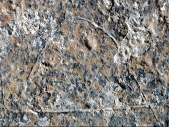 Detall de la pedra gravada