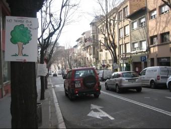 Als arbres de la rambla de l'Hospital de Vic , ara de dos carrils, s'hi han penjat diversos cartells demanant que no els tal·lin. A.A