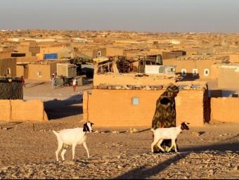 Un poblat saharià a la rodalia de Tinduf. LLUÍS SERRAT