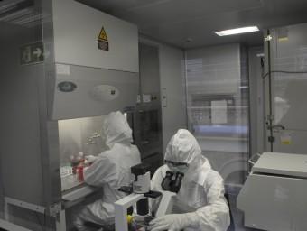 La Universitat de Barcelona està preparada per dur a terme teràpia avançada en la recerca.  ARXIU