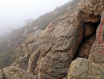 Per arribar a la Cova de les Encantades s'ha de fer un camí amb pendent per enmig del bosc i les roques J.RAMOS