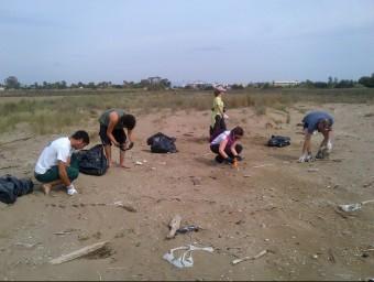 Un grup de voluntaris del parc natural retira brossa acumulada a la platja dels Eucaliptus. PARC NATURAL DEL DELTA