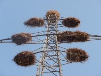 Torres elèctriques abandones a Binèfar i que es podrien reutilitzar amb la nova MAT D.M