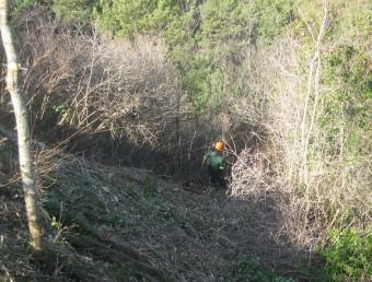 Un operari treballant en una de les zones que s'estan netejant aquest any. EL PUNT AVUI
