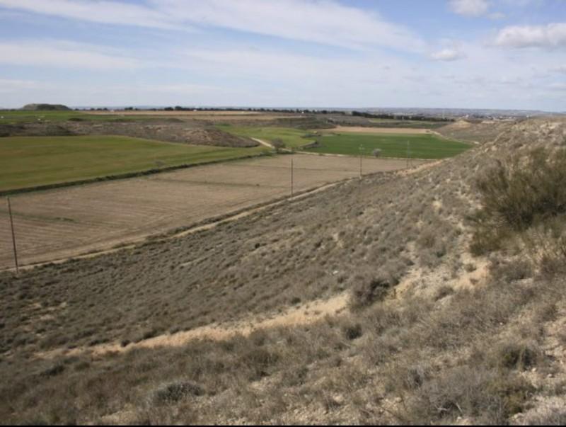 Els Secans de Mas de Melons-Alfés són el millor exemple de paisatge estèpic a Catalunya ARXIU