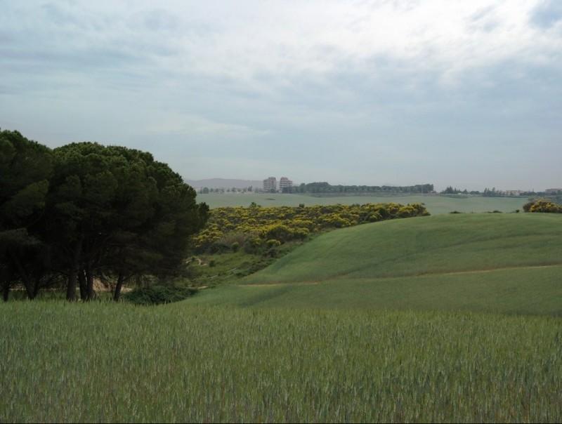 El Pla de Reixac, la zona agrícola forestal situada entre Montcada, Ripollet, Santa Perpètua i La Llagosta PLATAFORMA SALVEM EL PLA DE REIXAC