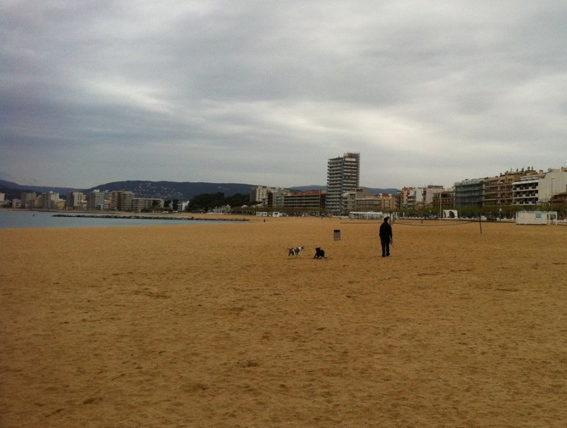 La platja gran de Palamós, en primer terme, i, al fons, el passeig marítim de Sant Antoni de Calonge J.T