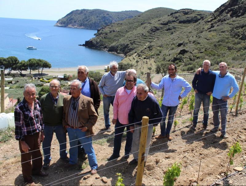 Visita dels experts vitivinícoles