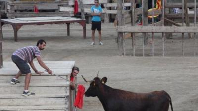 Diversos joves durant un correbous a l'Ebre en una imatge de l'estiu passat. ACN