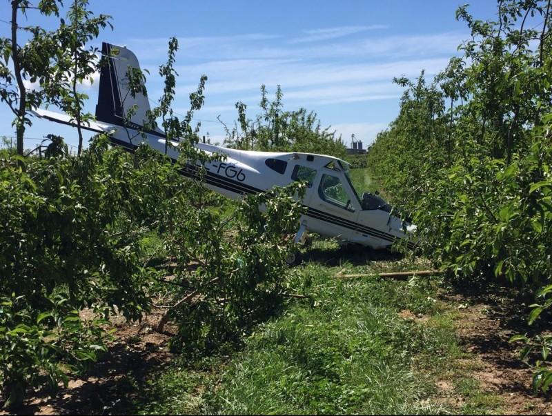 L'avioneta que abans-d'ahir va dur a terme un descens forçós i va quedar en un terreny d'arbres fruiters, a prop de la carretera que va de Viladamat a l'Armentera EPA