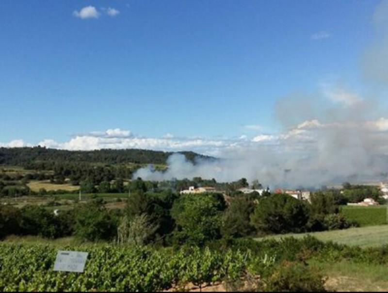 Una imatge de l'incendi a Torrelavit BOMBERS DE LA GENE