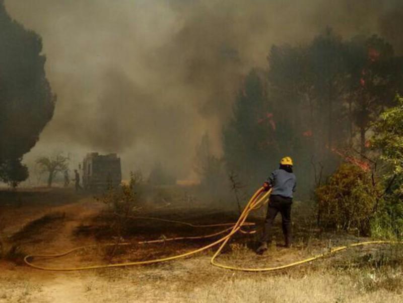 Un bomber , en un incendi a Ascó l'any passat. ARXIU