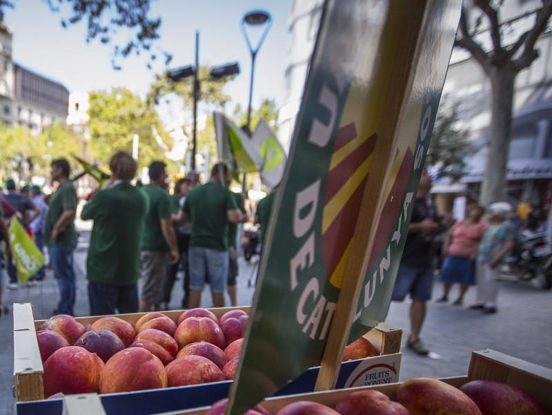 Protesta contra el vet rus, a Lleida.  ALBERT SALAMÉ