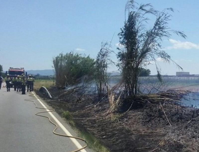 El foc va socarrimar un terreny agrícola, a tocar d'arbres fruiters i a la falda del massís del Montgrí BOMBERS