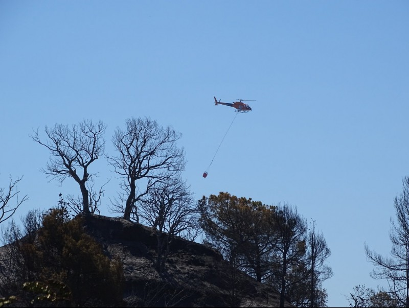U helicòpter remulla la zona a Sant Feliu, dimarts al matí JORDI PREÑANOSA