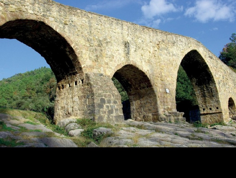 El pont romànic de Cercs ACNA