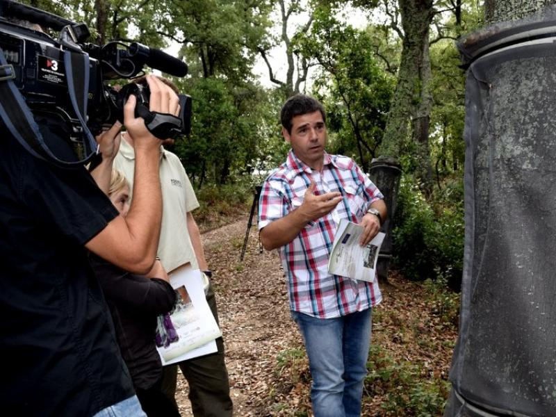 Una imatge de l'explicació d'ahir de les malles per combatre els corcs vius de les suredes del massís Guilleries-Montseny, ahir a càrrec de Josep Maria Tusell (Consorci Forestal). EL PUNT AVUI