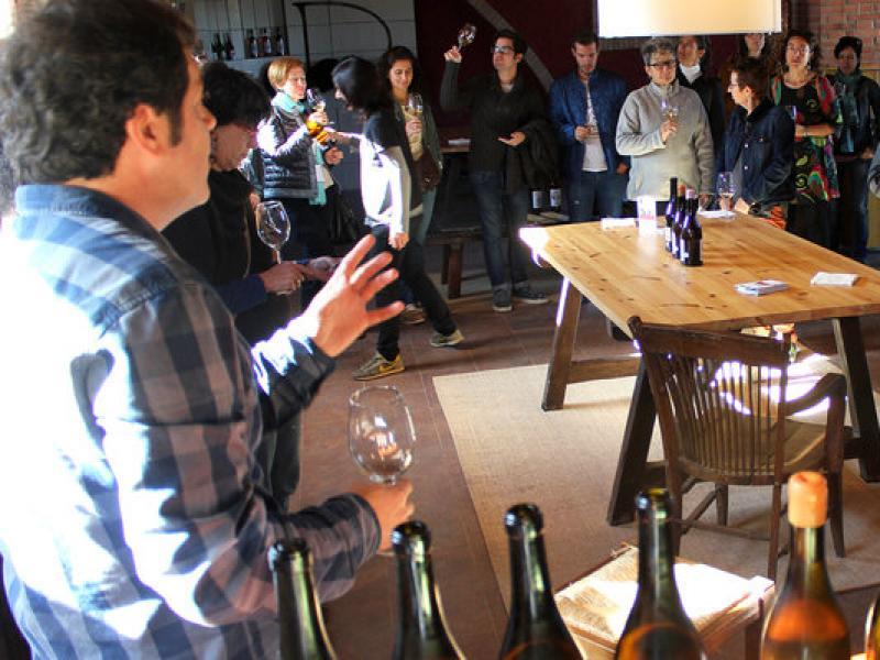 Una activitat de cinema i visita al Celler Cal Descregut de Vilobí del Penedès, en l'edició del Most de l'any passat. TAEMPUS