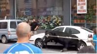 Imatge del bou capllaçat , quan envesteix un vehicle, dissabte passat a Amposta