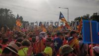 Una imatge de la manifestació durant la Diada de l'any passat a l'avinguda Diagonal