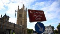 Els liberaldemòcrates britànics es comprometen a aturar el Brexit si guanyen les properes eleccions