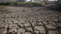 L'estany de Sils, sense aigua