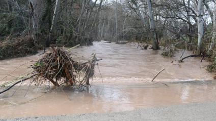 Riu Anoia al seu pas pel camí de Jorba a Tous tancat