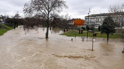 El riu Sió desbordat ahir al migdia al pas pel municipi d'Agramunt