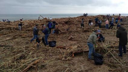 Voluntaris netejant la platja d'Arenys