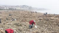 Els voluntaris treien plàstics d'entre les canyes i els arbres