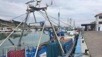 Les barques amarrades al port d'Arenys de Mar, on divendres es va fer l'última subhasta de peix