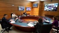 Imatge del Consell de Ministres telemàtic, com tots durant l'estat d'alarma, de dimarts passat