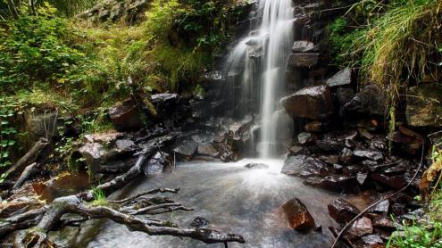 Les rieres i torrents del Montseny poden mantenir aigua al llarg de tot l'any.