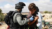 Un palestí prova de frenar la demolició de cases , la setmana passada, a Cisjordània