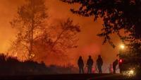 Un grup de bombers treballen  en l'extinció d'un incendi  a Wrightwood (Califòrnia)