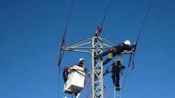 Tècnics d'Endesa instal·len els dispositius en una torre elèctrica per evitar la col·lisió i l'electrocució dels ocells