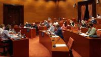 Pla general de la Comissió de Salut durant la compareixença del portaveu del comitè de vaga dels MIR, Àlex Mayer, per explicar les reivindicacions del col·lectiu i la situació de les negociacions