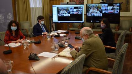 Pla general de la reunió telemàtica del consell interterritorial presidida per Illa
