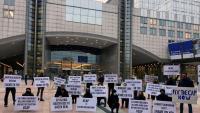 Manifestació davant del Parlament Europeu contra la reforma de la política agrària comuna (PAC)