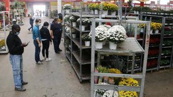 Activitat comercial al Mercat de Flor i Planta Ornamental