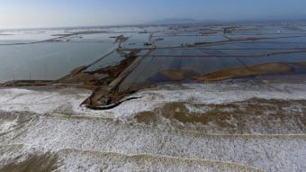 El mar entra als arrossars del delta