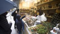 Famílies senceres van acudir a comprar decoració nadalenca a la fira de la Sagrada Família.