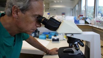 El doctor Clotet, al microscopi, en un dels laboratoris del centre de recerca IrsiCaixa