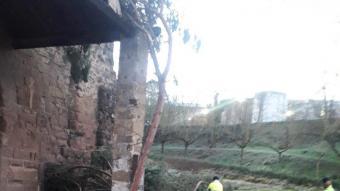 L'arbre, de grans dimensions, va impactar directament amb la porxada del monestir