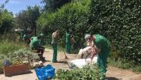 Alumnes de l'institut Les Salines del Prat fan pràctiques de jardineria